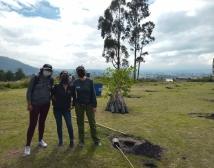 100Mil árboles para Quito