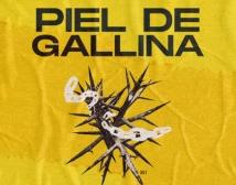 Piel de Gallina fanzine
