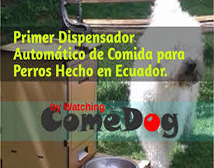 COMEDOG by Watching